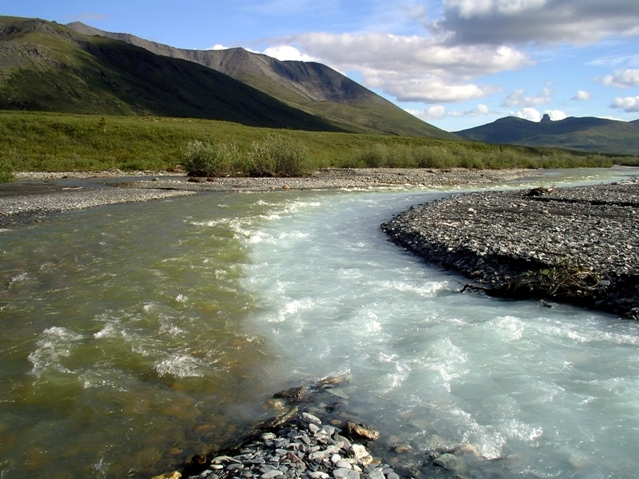 """""""Merging Waters"""". A glacial stream merges with a clear stream in the Noatak River drainage. Credit: Gates Of The Arctic National Park & Preserve, National Park Service, public domain."""